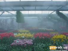 туманное охлаждения теплиц