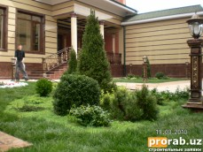 Озеленение и благоустройство территории в Ташкенте