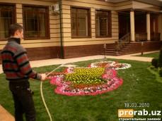 Оформления садов, ландшафт, озеленение в Ташкенте